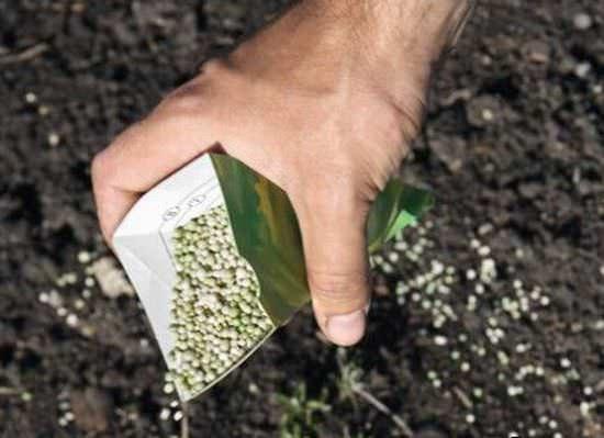 Любое обеззараживание почвы при помощи химических средств требует дальнейшего восстановления микрофлоры посредством внесения биологически активных веществ