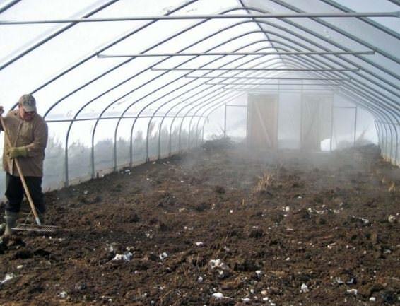 Максимальный обеззараживающий эффект даёт окуривание почвы