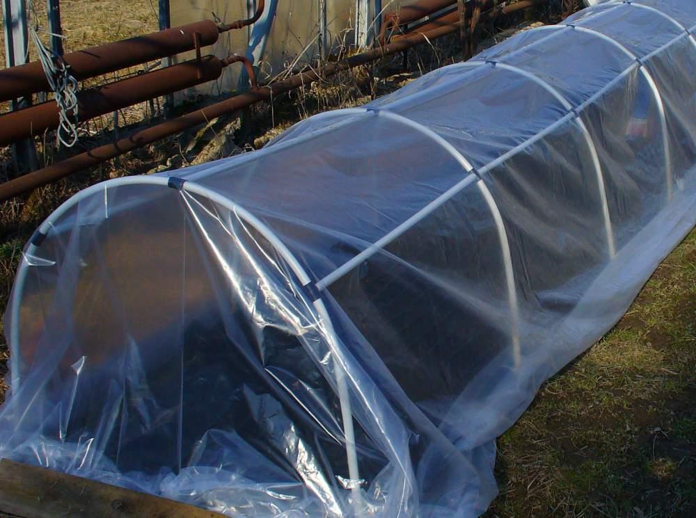 Непрочный плёночный материал следует обязательно демонтировать, промыть мыльным раствором, обработать с применением медного купороса и просушить