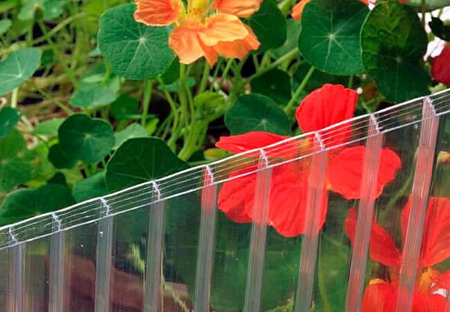 В качестве укрывного материала для теплиц чаще всего применяется поликарбонат