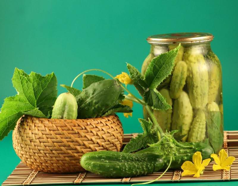 Многие хозяйки задаются вопросом: почему горчат хрустящие и зеленые огурцы? Можно просто срезать корочку. Но в ней содержится основная часть полезных микроэлементов овоща