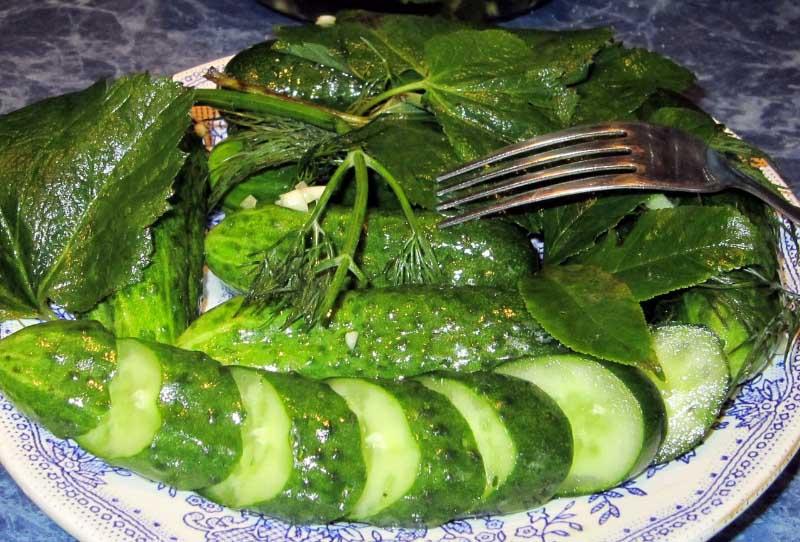 Что делать, если вкус овощей не устраивает? Не стоит выбрасывать урожай. Кукурбитацин отлично расщепляется при проведении необходимой обработки. Можно засолить или замариновать плоды