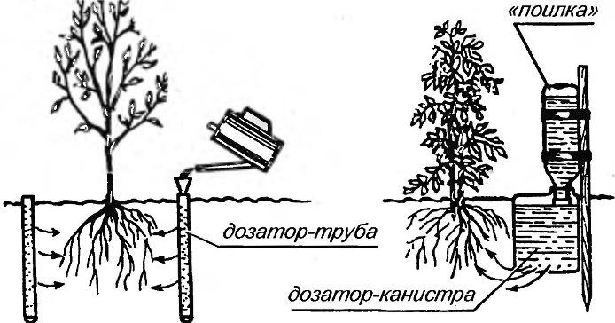 Внутрипочвенный полив применяется в больших по площади теплицах и при культивировании многолетних растений
