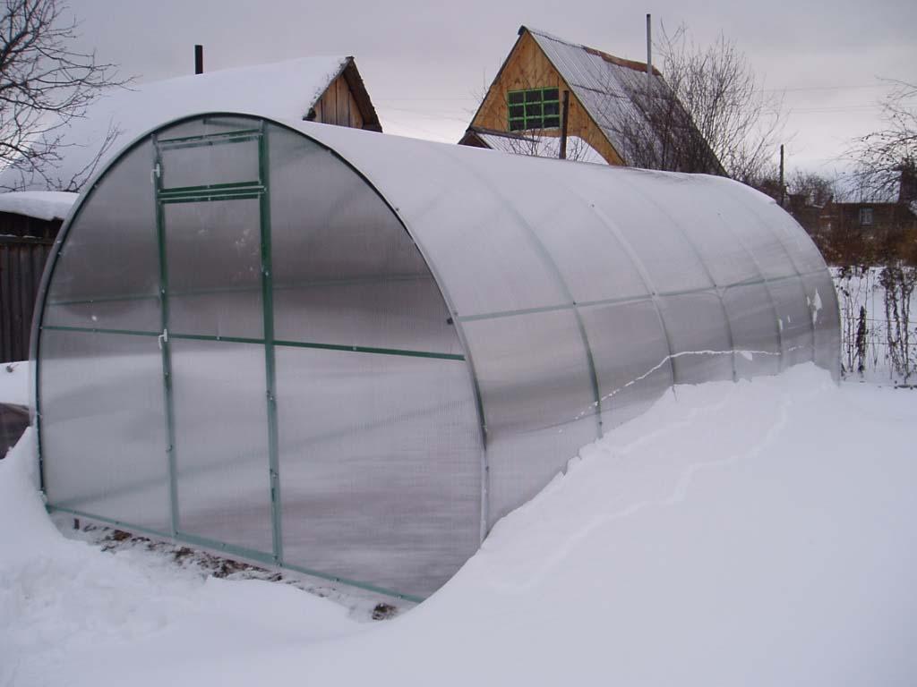Это популярное и долговечное тепличное сооружение не требует выполнения демонтажных работ с целью консервации на зимний период