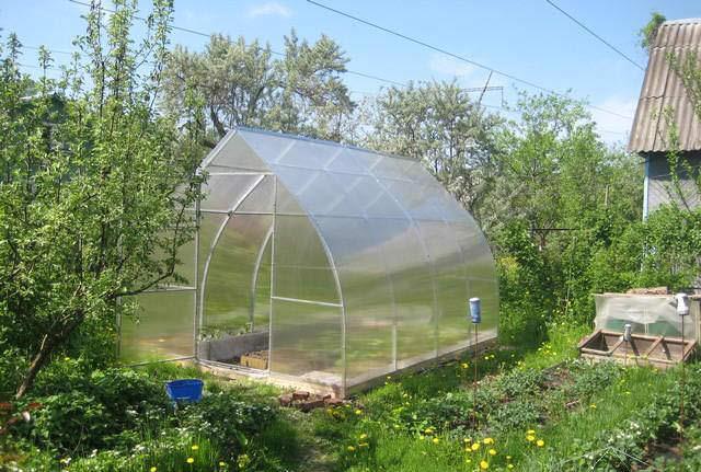 Приобретение теплицы «Кремлёвская Стрелка» является экономически выгодным вложением средств и способствует получению максимальной урожайности с минимальными затратами