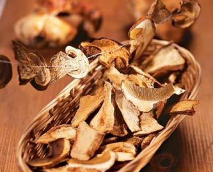 Чтобы получить сушеные грибы на зиму, необходимо правильно приготовить их
