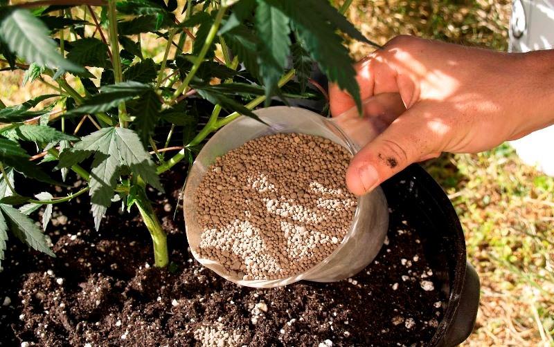 Азотные минеральные удобрения также выпускается в смешанной форме - это аммонийно-нитратные