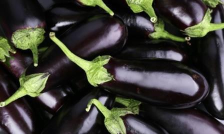 Баклажан на протяжении многих лет успешно выращивается в Подмосковье