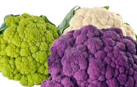 Цветная капуста является источником множества ценных веществ