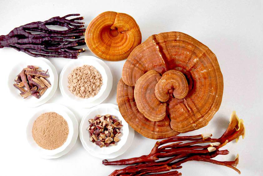 Большое количество полезных веществ дает возможность использовать рейши в лечении огромного количества заболеваний