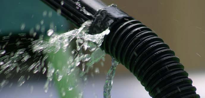 Подтекающая из шланга вода является прекрасной средой для грибковой инфекции в условиях закрытого грунта