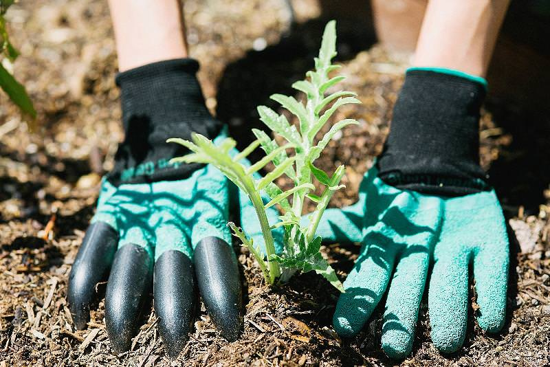 Простота применения и легкость ухода за изделиями - это одни из важнейших особенностей перчаток