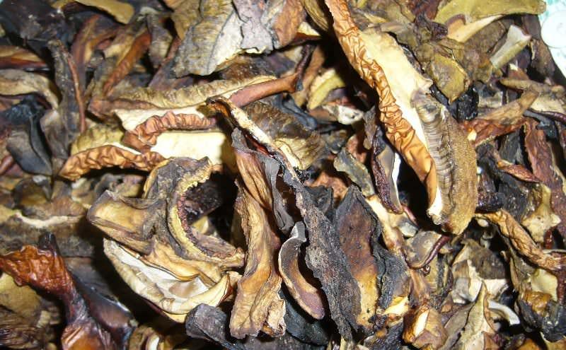 Высушить белые грибы в духовке также просто