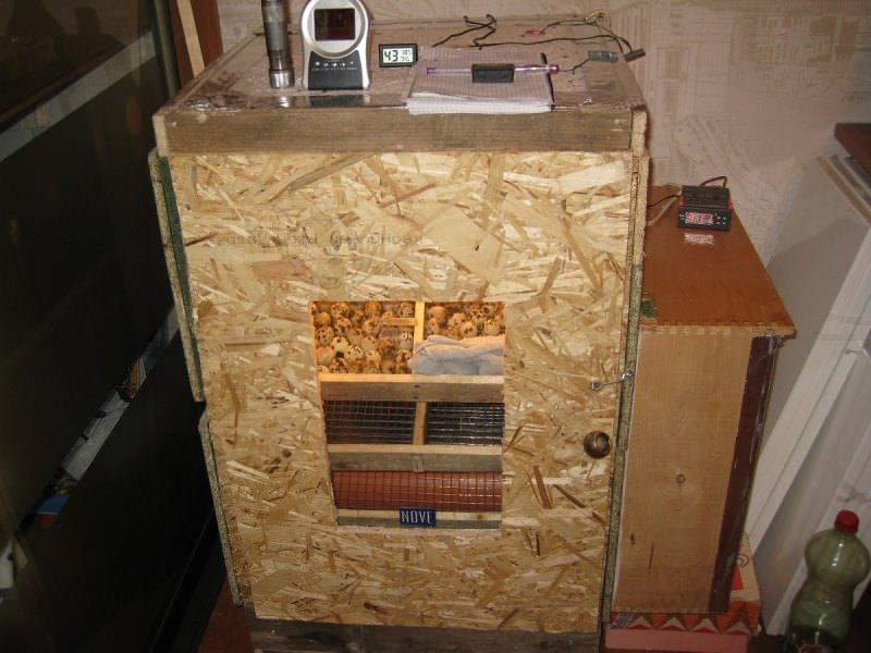 Перед тем как сделать инкубатор своими руками из досок, следует подготовить листы фанеры толщиной не менее 7 мм, причем этого ресурса должно быть много, так как стенки должны быть двойными