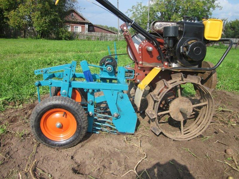 Очень часто сельчане приобретают или делают сами картофелекопатель, который работает совместно с мотоблоком