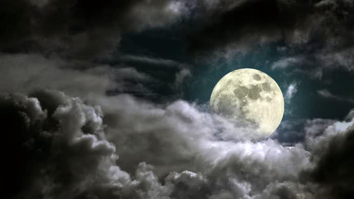 Использование ежегодного лунного календаря позволит правильно спланировать периодичность проведения сельскохозяйственных работ