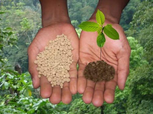 Азотные удобрения являются одними из самых распространенных