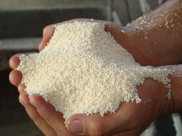 Натриевая селитра может применяться на различных типах почв для основного внесения или в качестве подкормки