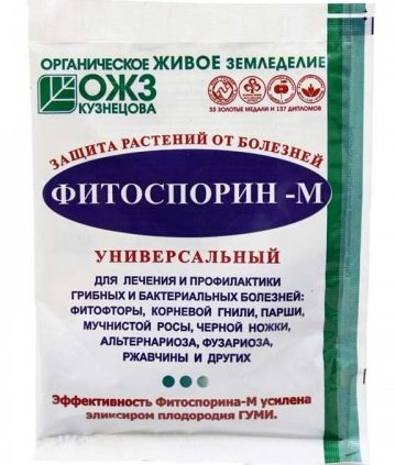 Фитоспорин-М помогает предотвратить бактериальные и грибные болезни