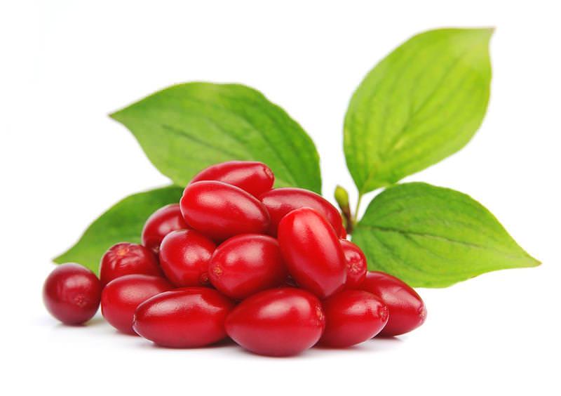 Плоды кизила хорошо подходят для лечения желудочно-кишечных расстройств