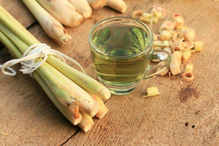 Заваривать лимонное сорго можно не одним способом, используя растение в качестве основного ингредиента или дополнения к общему сбору трав