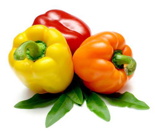 Хрустящий перец — это один из любимых овощей российских садоводов