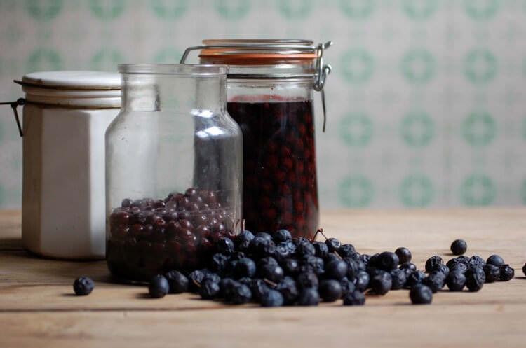 Настойка из ягод терна полезна при болезнях органов пищеварения, грибковых инфекциях, пищевых отравлениях и даже дизентерии