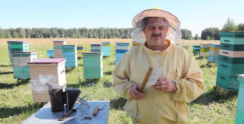Настоящий пасечник способен рассказывать о пчелах часами