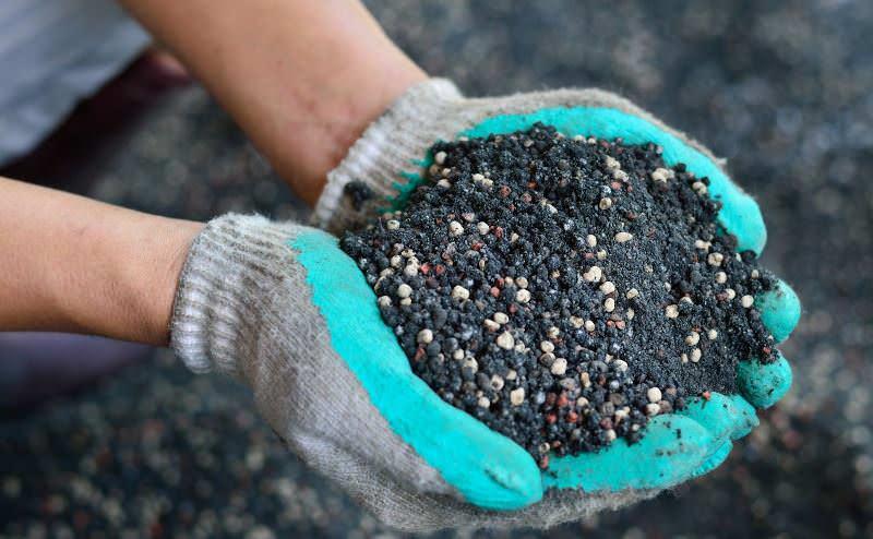 В почве должно быть достаточно азота, калия, фосфора, железа, магния и прочих макро- и микроэлементов