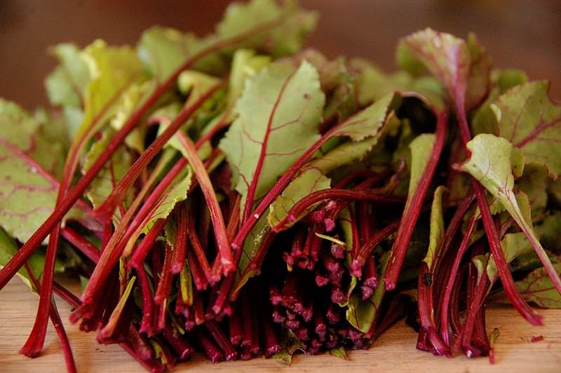 Для лечения можно использовать сок из листьев свеклы, они также обладают множеством полезных свойств