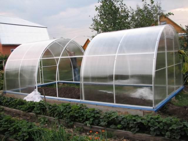 Если есть желание получить хороший урожай, вам стоит озаботиться таким вопросом, как обустройство теплицы внутри
