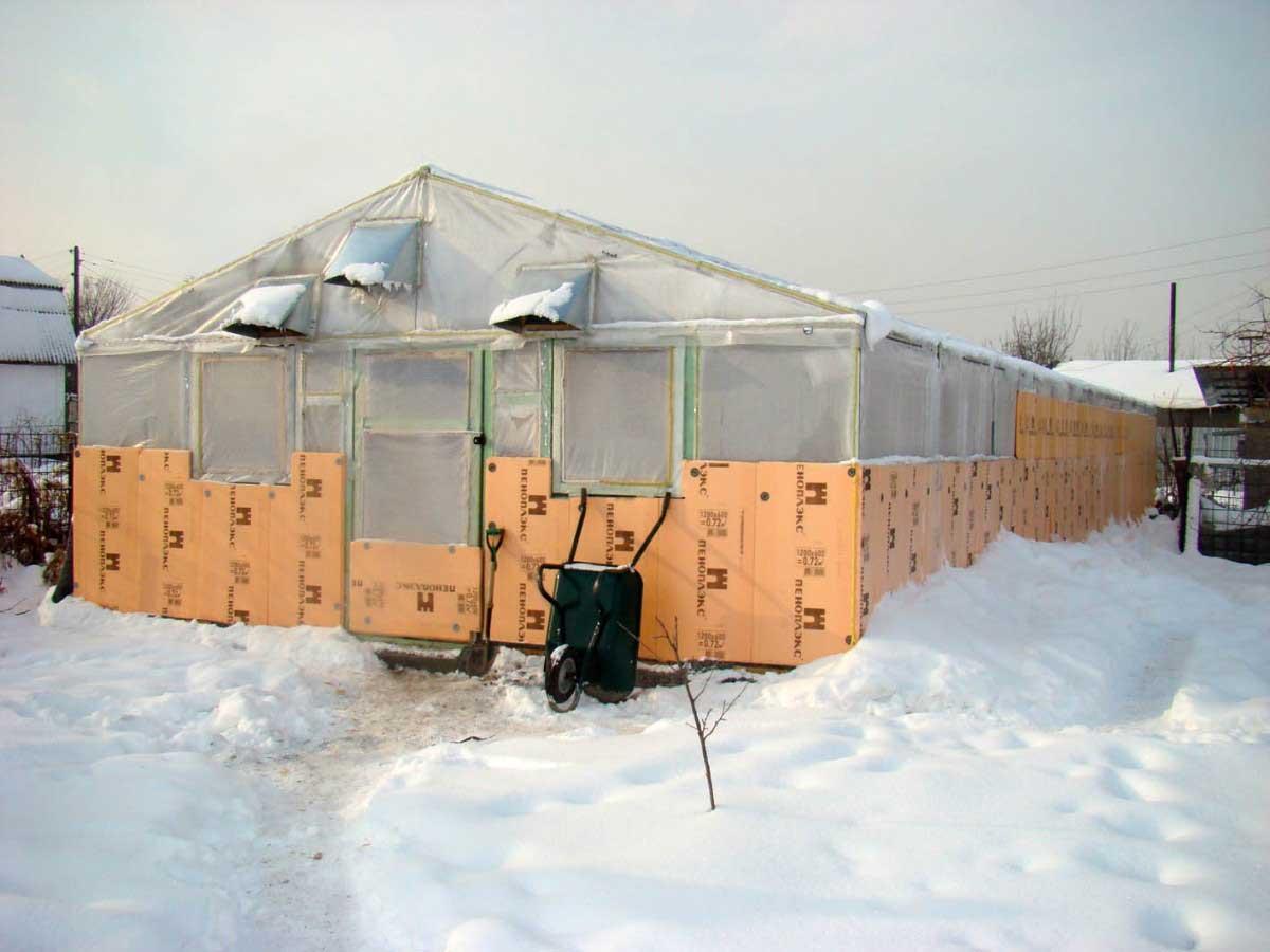 Парник и зимняя теплица могут быть использованы не только для классических и традиционных огородных культур на протяжении всего года, но и для получения урожая грибов или выращивания цветов, экзотических фруктов и цитрусовых