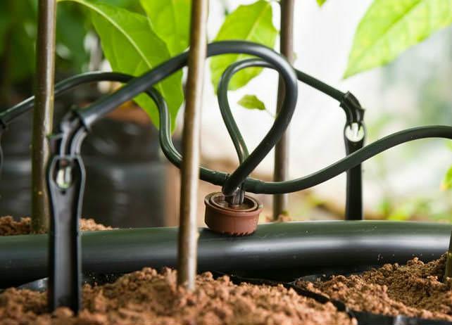 Капельницы для полива применяются для установки капельного орошения. Его располагают около грядок, вода при этом идет каплями прямо к корням растений