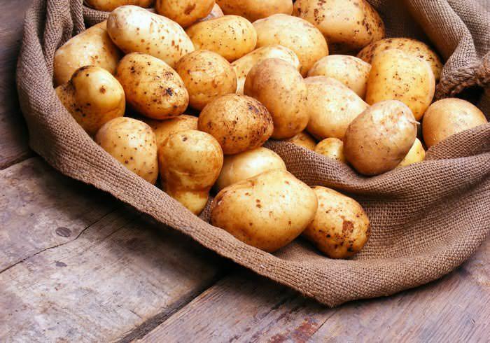 На сегодняшний день существуют сорта картофеля устойчивые к поражению колорадским жуком