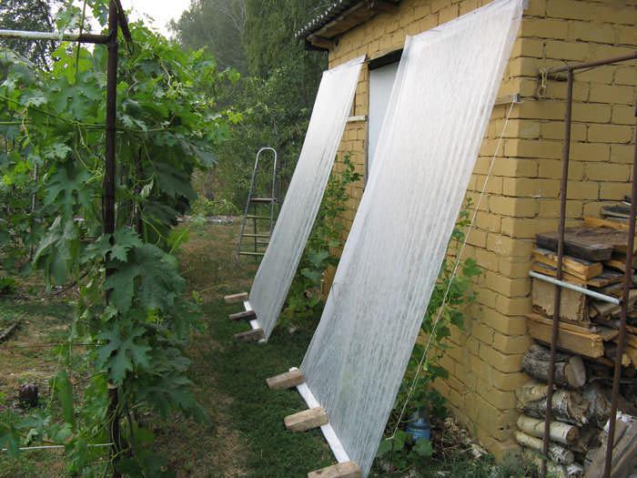Помимо тепличных, парниковых сооружений и оранжерей, сетка для создания затенения может быть использована с целью защиты растений, выращиваемых в условиях открытого грунта