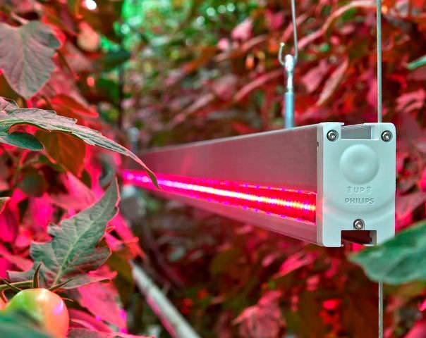 Светоизлучение у светодиодов может со временем снижаться, что ведет к уменьшению яркости светодиодных ламп по-истечении 3-5 лет, т.е. на исходе типового гарантийного срока