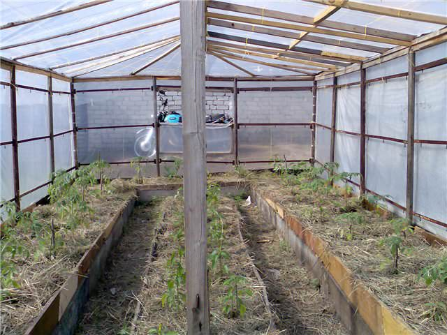 Чтобы огород давал отличный урожай, его грядки нужно сделать по принципу компостных куч
