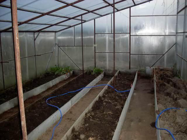 Благодаря теплым грядкам увеличивается урожайность овощных и плодовых культур