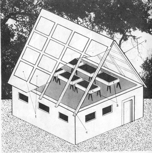 Один из способов расположения строения: крыша здания модифицируется, переделывается под прозрачную. При этом ящики с растениями устанавливаются на чердаке.