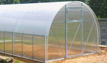 Теплицы из поликарбоната – долговечные, прочные и практичные сооружения, которые позволят Вам получить хороший урожай