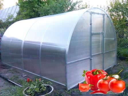 Сибирские инженеры и конструкторы создали хорошие теплицы, позволяющие выращивать овощи посреди суровых сибирских зим