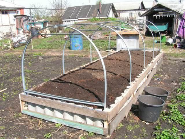 В жаркое время года плёнка в целях предотвращения перегрева растений в парнике убирается, а почва мульчируется