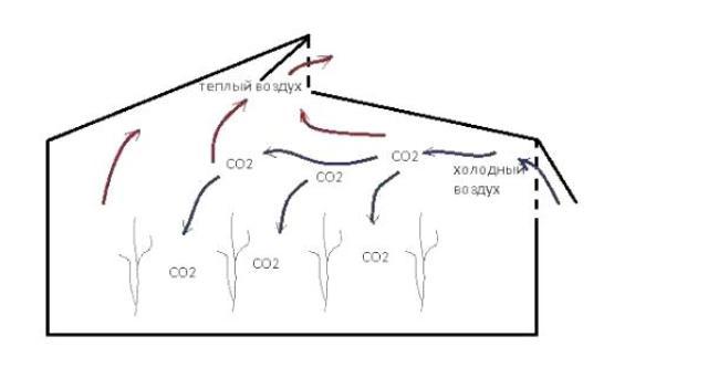 Устанавливая в теплице вентиляционную систему, Вы должны подойти к процессу ответственно, учитывая особенности выращиваемых культур