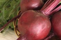 Особенности выращивания сорта свёклы «Пабло f1»