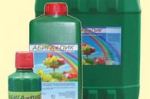 Как использовать Абига-Пик для обработки садовых и огородных культур