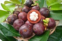 Тропический фрукт мангустин: как выбрать и употреблять
